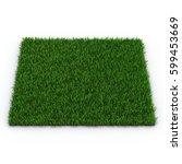 zoysia grass on white. 3d... | Shutterstock . vector #599453669
