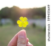 Hand Holding A Clover Leaf. Su...