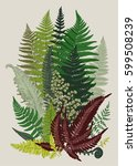 leaver ferns. composition.... | Shutterstock .eps vector #599508239