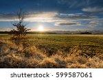 evening landscape with sunset... | Shutterstock . vector #599587061