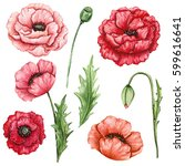 Floral Set Of Watercolor Red...