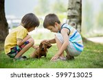 Stock photo two beautiful preschool children boy brothers playing with little pet dog in the park summertime 599713025