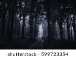 night in scary dark forest.... | Shutterstock . vector #599723354