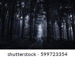 night in scary dark forest.... | Shutterstock . vector #599723354