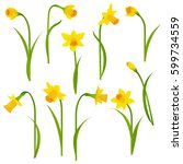 narcissus set with gradient... | Shutterstock .eps vector #599734559