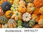Colorful Pumpkins Collection O...