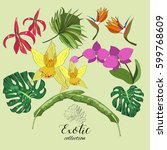 exotic collection of hand drawn ... | Shutterstock .eps vector #599768609