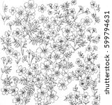 line drawing of marigolds and... | Shutterstock . vector #599794631