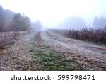 view of road on meadow | Shutterstock . vector #599798471