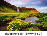 lovely view of blooming green...   Shutterstock . vector #599945624