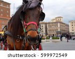 horse face in carriage. animal... | Shutterstock . vector #599972549