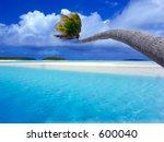 Bending Palm - stock photo
