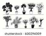 vector house tropical palm... | Shutterstock .eps vector #600296009