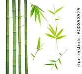 Bamboo Stalks And Leaves...