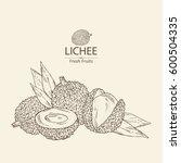 background with lichee. hand... | Shutterstock .eps vector #600504335