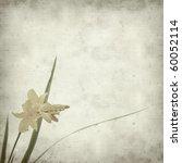 textured old paper background...   Shutterstock . vector #60052114