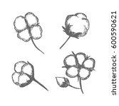 vector set of hand draw ink... | Shutterstock .eps vector #600590621