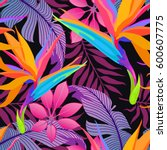 summer exotic floral tropical... | Shutterstock .eps vector #600607775