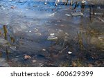 thaw in the park. puddle with... | Shutterstock . vector #600629399