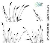 set of spikelets of grass.... | Shutterstock .eps vector #600648191