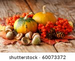 Harvested Pumpkins With Fall...