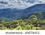 an image of the australian rain ... | Shutterstock . vector #60076411