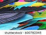 feathers texture. beautiful... | Shutterstock . vector #600782345