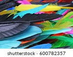 feathers texture. beautiful... | Shutterstock . vector #600782357