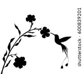 hummingbird and flower... | Shutterstock .eps vector #600839201