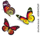 three orange butterfly isolated ... | Shutterstock . vector #600840569