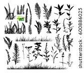 grass set. vector. | Shutterstock .eps vector #600886025
