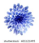 white blue  flower... | Shutterstock . vector #601121495