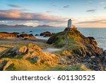 sunset at ynys llanddwyn island ... | Shutterstock . vector #601130525