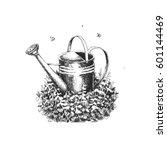 garden watering can in the... | Shutterstock . vector #601144469