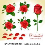 Stock vector detailed realistic red roses collection 601182161