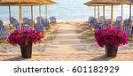 Sandy Beach With Flower Pots O...