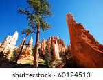 bryce canyon | Shutterstock . vector #60124513