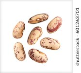 dry vector beans isolated on... | Shutterstock .eps vector #601263701