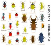 flat insect set isolated on the ... | Shutterstock .eps vector #601273505