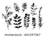summer black silhouette tree... | Shutterstock .eps vector #601297367