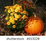 Autumn Display With Pumpkins...