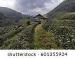 this place is located in front... | Shutterstock . vector #601355924
