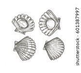 seafood scallops set hand drawn ...   Shutterstock .eps vector #601387997