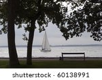 Two Trees And One Sailboat