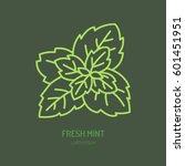 modern vector flat icon of mint ... | Shutterstock .eps vector #601451951