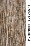 old  distressed  rough and... | Shutterstock . vector #601603145