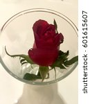 red rose in the glass vase top... | Shutterstock . vector #601615607