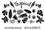 tropical leaves  flowers set.... | Shutterstock .eps vector #601628825
