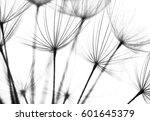 abstract macro photo of... | Shutterstock . vector #601645379