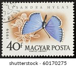 Small photo of HUNGARY - CIRCA 1959: a stamp printed in Hungary shows illustration of Lysandra Hylas (Plebicula Argester) a butterfly from the family of Lycaenidae. Hungary, circa 1959